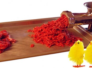 Article - Animal Suffering: Meat-ing Supply and Demand. (Image by Sam Bourland, 3 chicks photo montage by AnimalCrueltyFreeProducts.com)